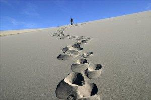 Lo que  hiciste en el año son como huellas en la arena, miralas antes que el viento las borre.