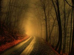 No importa lo que quieras en tu mente, el camino para lograrlo siempre será incierto. Confía.