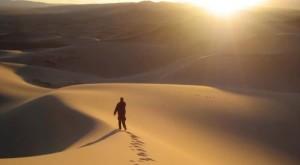 De esos largos caminos recorridos, solo queda aprendizajes para volver a donde todo comienza.