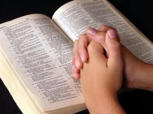 El manual para la vida esta escrito en varias versiones. Una de ellas es la Santa Biblia. Úsala y veras.