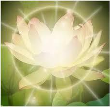 La transformación es posible solo cuando somos plenos en agradecimiento y reconocimiento de lo que somos y creamos a través del amor.