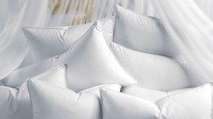 La mejor almohada. Un aconsciencia limpia.