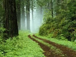 Por incierto que parezca, el camino siempre ofrece oportunidades.