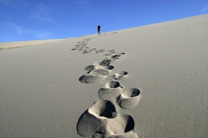 Cada paso que das, por errático que parezca, te acerca a tu meta.