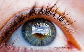 Leccion Esencial I - Observacion